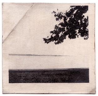 Landscape Unknown, 2006