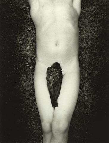 Fallen, 2005