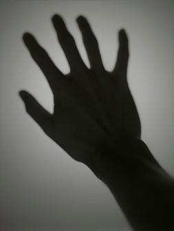 Hold the Dawn at Reach, 2004
