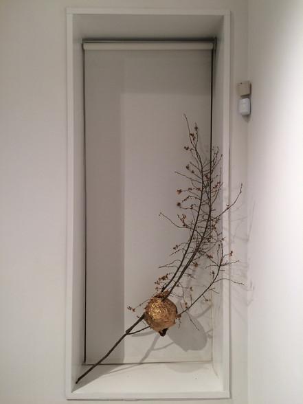 Gilded Hornet's Nest, 2015