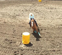 Barrel Racing Williams Lake, BC