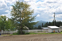 Horse Boarding Williams Lake, BC