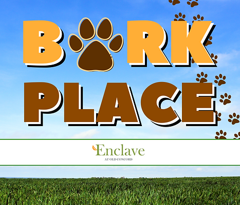 bark place.png