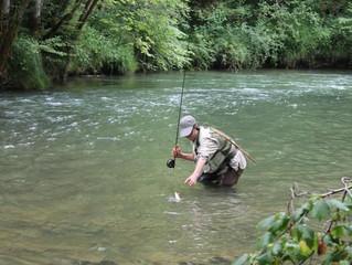 Les activités de pêche peuvent reprendre