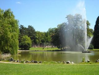 🌳 🌲 Parcs, squares et jardin: tous rouverts dès aujourd'hui!