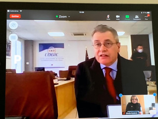 Audition du Préfet Alain Thirion directeur général de la sécurité civile