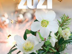 Bonne  et heureuse année à chacune et à chacun d'entre vous !