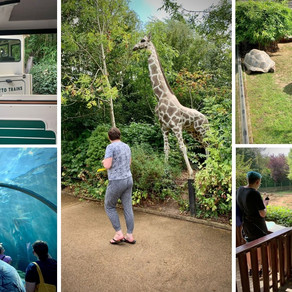 Woodville take a trip to Colchester Zoo....