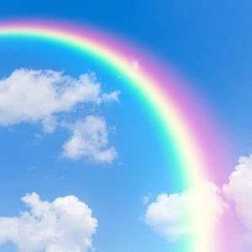 Rainbow for website 2.jfif