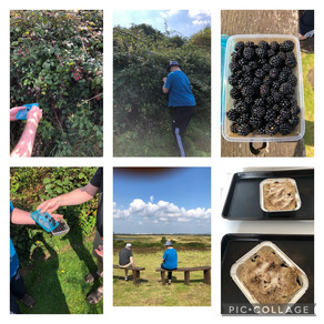 Blackberry picking and a delicious crumble....