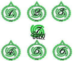 7 numeros.jpg