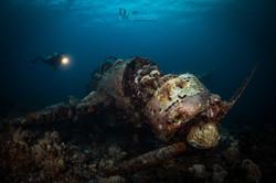 Underwater Photography Singaermarked