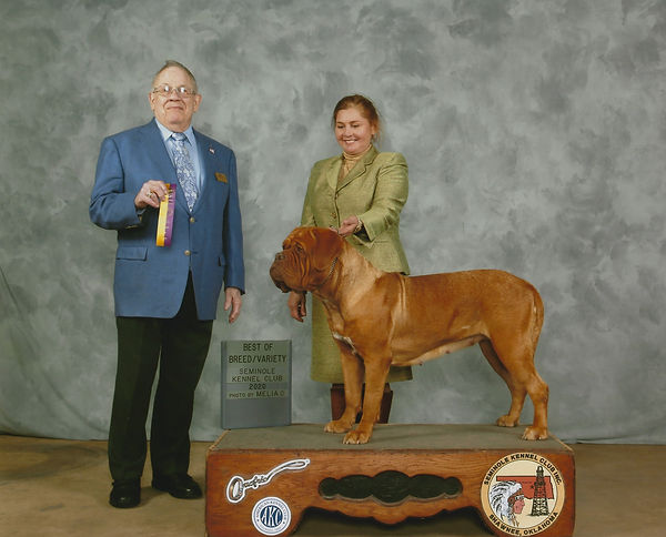 Kashmir New Grand Champion with Sonya.jp
