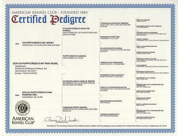 GCH pearl pedigree.jpg