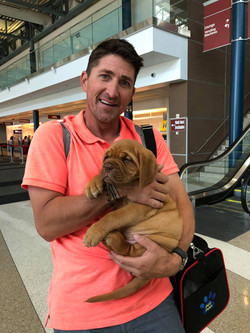 patrick picking up puppy