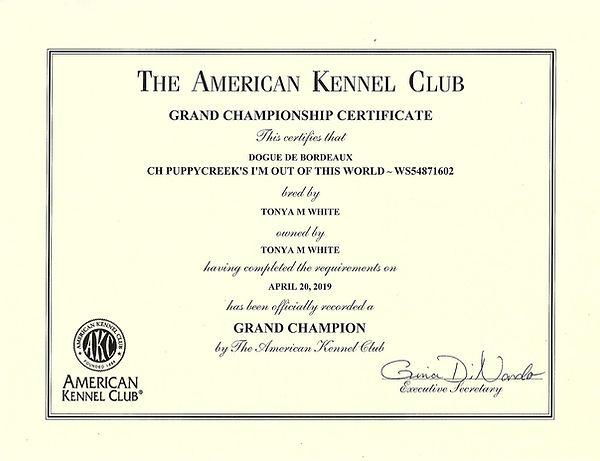 star GCH certificate.jpg