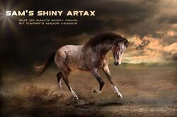SAM's Shiny Artax, 2020