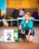 цвергпинчер,пинчер,карликовый пинчер,щенки,питомник,Дель Айленд,Минск