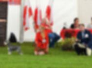 выставка, Дель Айленд, карликовый пинчер, цвергпинчер, немецкий пинчер, щенки, питомник