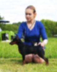 Ислав Гард Кипер-цвергпинчер,пинчер,карликовый пинчер,питомник,Дель Айленд