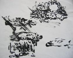 crtezipremev_053