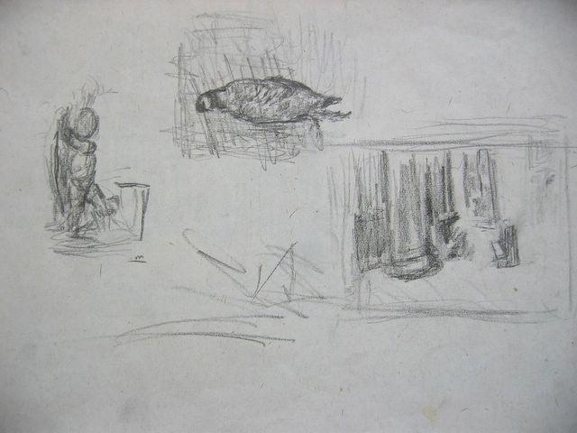 crtezipremev_062