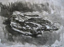 crtezipremev_087