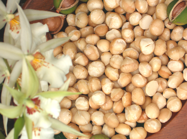 theres nothing like fresh raw macadamias from the farm