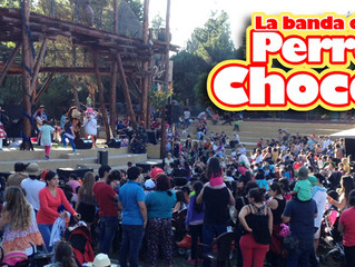 Chocolo hizo su debut masivo en el Buin Zoo