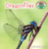 Backyard Safari series: Dragonflies by Trudi Trueit