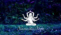 corporate yoga brussels, prenatal yoga brussels, postnatal yoga brussels, yoga prénatal bruxelles, yoga postnatal bruxelles, yoga entreprise bruxelles, cours de yoga privé bruxelles, private yoga classes bruxelles, vinyasa yoga bruxelles brussels