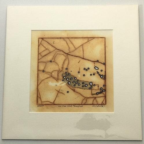 'Cow Close Wood, Threshfield' small rust print