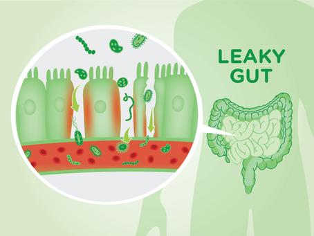 Leaky Gut-Syndrom... (der zu durchlässige Darm) was ist das und was kann ich dagegen tun?
