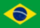 Estado Novo Brasileiro.png