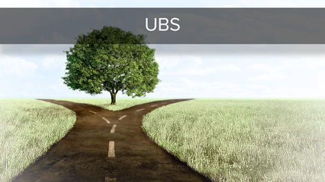 The UBS Essentials - Mid Year Market Outlook