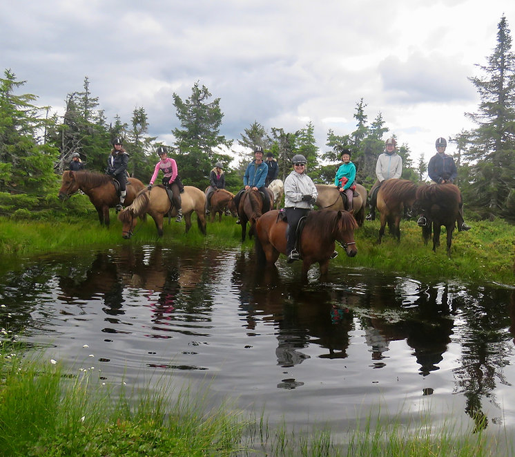 Hest_og_yoga_ved_vann_fjell.jpg