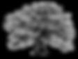 live-oak-tree-silhouette-10.png