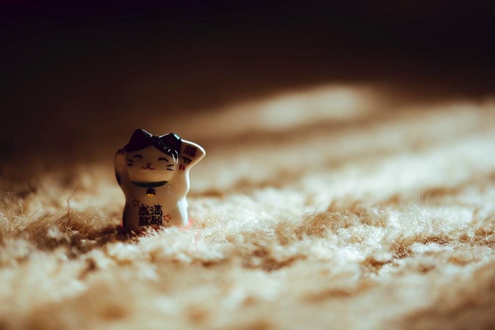 З чого роблять килими? |КилимКо Хмельницький|чистка килимів|Хімчистка килмів|пральня килимів