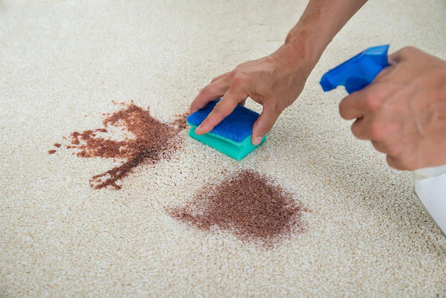 Поширені помилки при чистці килимів |Як чистити килими в дома?