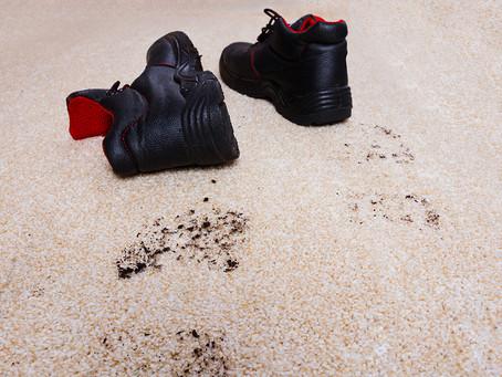 Чому краще віднести брудний килим до професійної пральні?