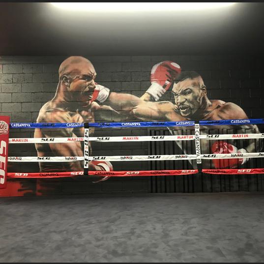 Tyson/Holyfield