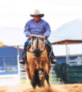 Phil Attard owner & trainer at Attard Stock Horses riding Attards Makita
