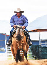 Phil Attard owner & trainer at Attard Stock Horses riding Attards Makita