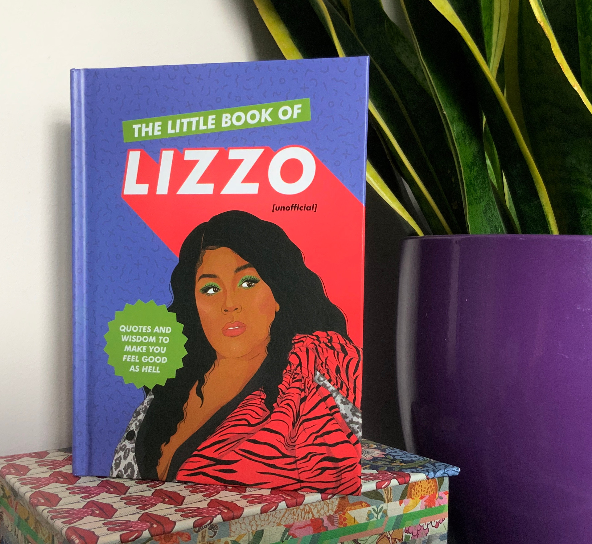 The Little Book of Lizzo