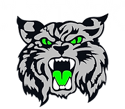 LynxLOGO.png