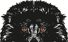 LION_HALF.png