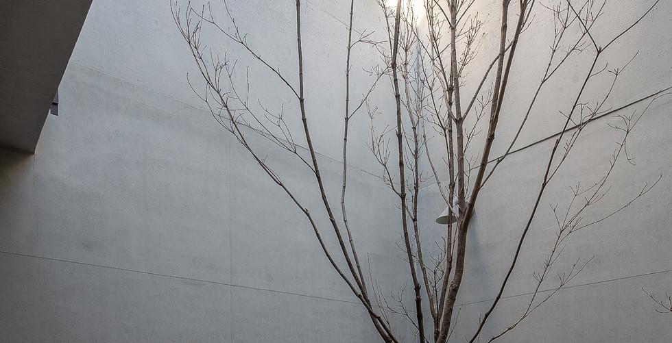 상동 건축가의 집 (7).jpg