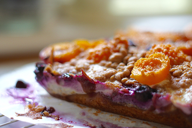 apricot-and-blueberry-crumble-cake-3