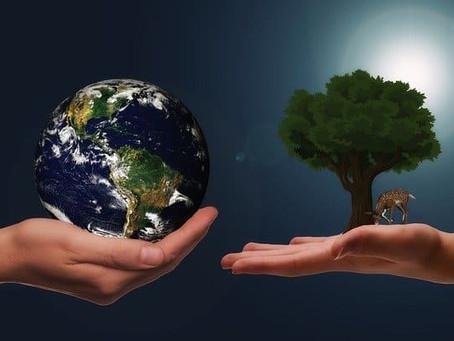 Green Investing: Nachhaltige ETF