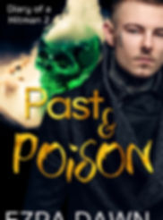Past & Poison eBook.jpg